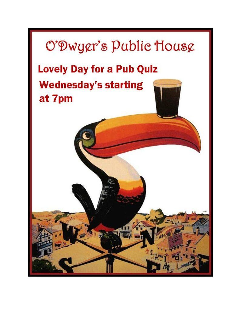 toucan pub 120319